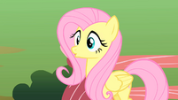 Fluttershy hears Rarity's cat S1E17