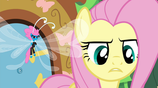 File:Fluttershy telling it like it is S4E16.png