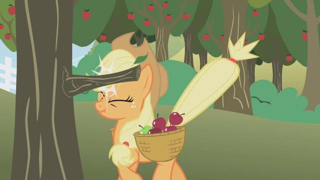 File:Applejack bonking her head S1E04.png