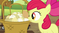 Apple Bloom sets her egg down S5E17