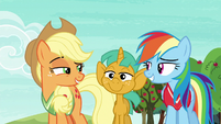 Applejack and Rainbow grin at each other S6E18
