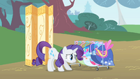 Rarity clothes rack S1E20