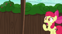 Apple Bloom shocked to see her cart S6E14