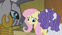 Zecora looking at remorseful Fluttershy and Rarity S1E09