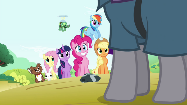File:Mane 6 and pets see Maud S4E18.png