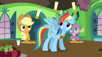 Rainbow Dash Surprised S3E10