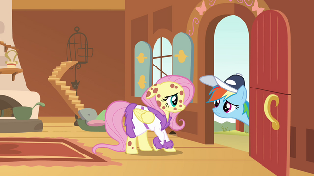File:Rainbow Dash at the door looking at Fluttershy S2E22.png