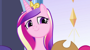 "Cadance teasing ""do you know him?"" EG"
