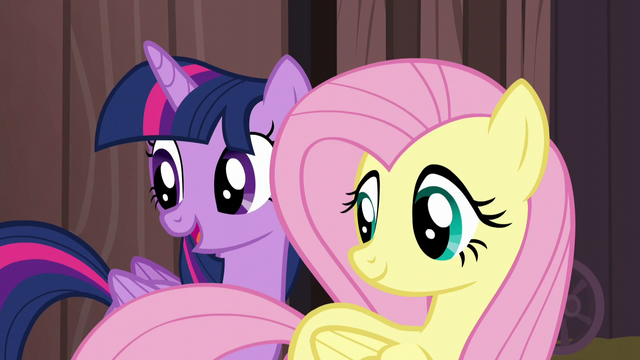 "File:Twilight Sparkle ""that's why we're here"" S5E23.png"