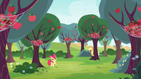 Apple Bloom notices the nets S4E17