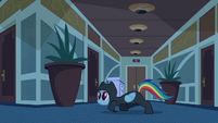 Rainbow Dash Infiltration 5 S2E16