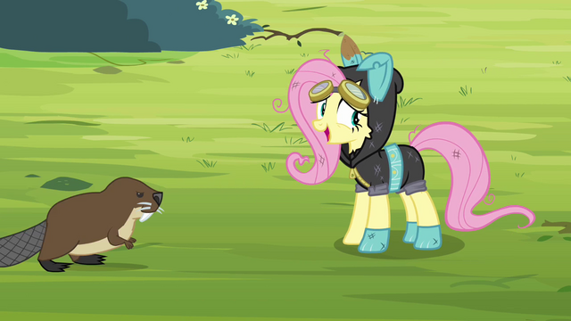 File:Fluttershy 'Guess we'd better go back' S3E05.png