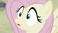 Fluttershy hears Party Favor S5E02