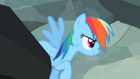 Rainbow Dash about to fly away S2E07