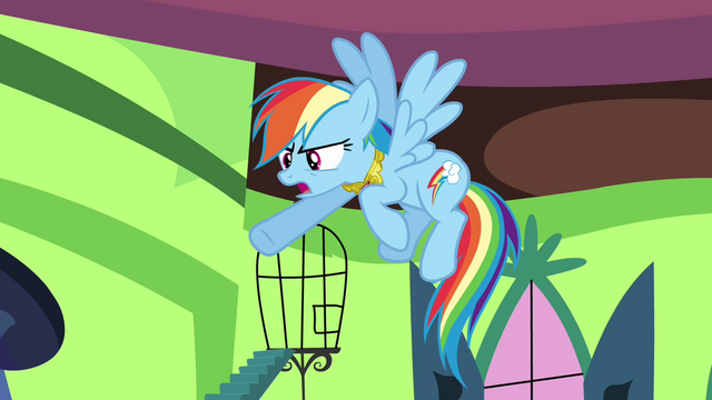 "File:Rainbow Dash ""he did that on purpose!"" S03E10.png"