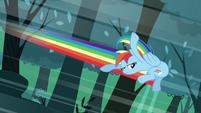 Rainbow about to kick through trees S3E06