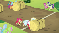Orchard Blossom pushes hay bale over the line S5E17