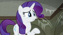 "Rarity mentions ""strong-smelling raccoons"" S6E9"