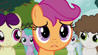 "Scootaloo ""you're not mad"" S4E15"