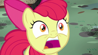"Apple Bloom surprised ""twittermites!"" S5E4"