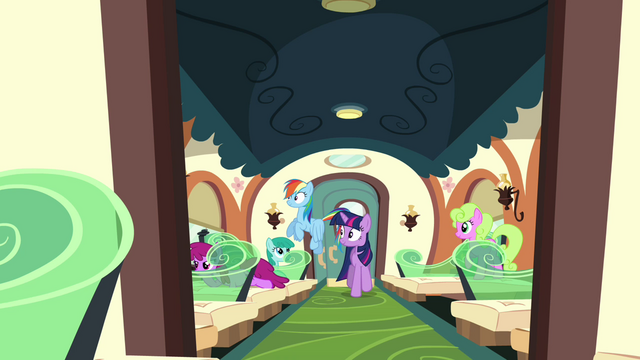 File:Twilight and Rainbow Dash on the train S03E11.png