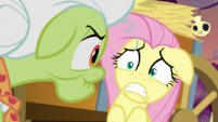 "Fluttershy ""please tell me"" S5E21"