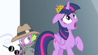 Twilight and Spike in shock S4E24
