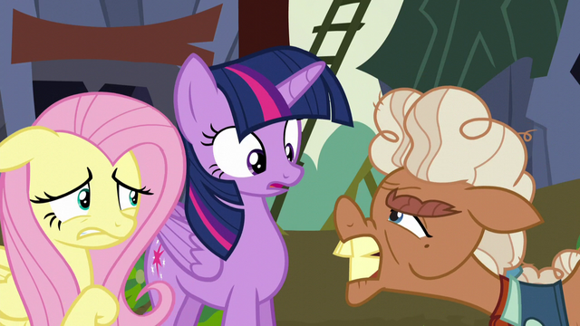 File:Ma Hooffield accuses Twilight and Fluttershy of being spies S5E23.png