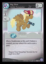 Big Shot, Wildlife Photographer card MLP CCG