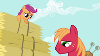 Scootaloo Big Mac S2E17