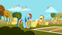 Rainbow Dash tossing a bale of hay S1E13