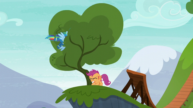 File:Rainbow Dash flies into another tree S6E7.png