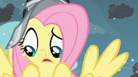Fluttershy questioning what to do S2E11