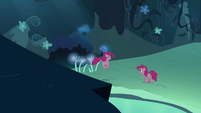 Pinkie Pie double hopping towards Pinkie Pie S3E03