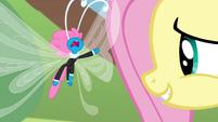 Seabreeze berating Fluttershy S4E16