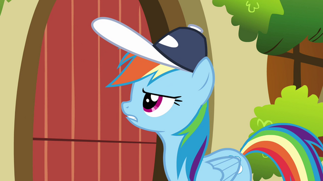 File:Rainbow Dash knock on Fluttershy's door S2E22.png