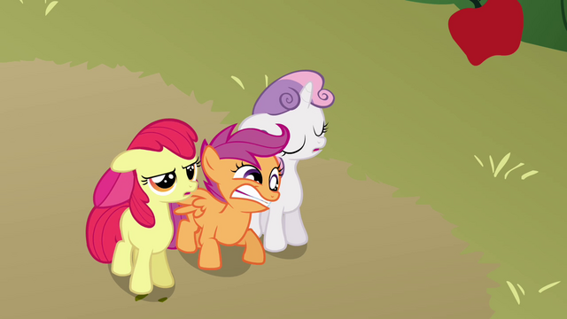 File:Scootaloo furious S3E04.png