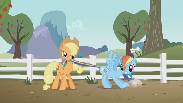 File:Applejack with Rainbow Dash S01E03.png