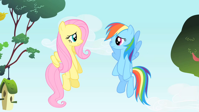 File:Rainbow Dash and Fluttershy are speechless S1E25.png