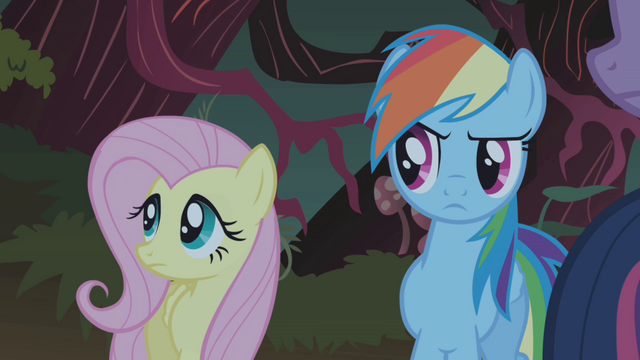 File:Fluttershy and Rainbow Dash S01E02.png