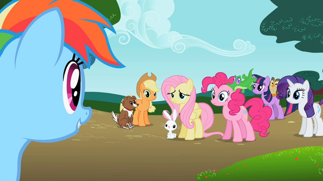 File:Rainbow Dash 'If I'm a pony without a pet, right?' S2E7.png
