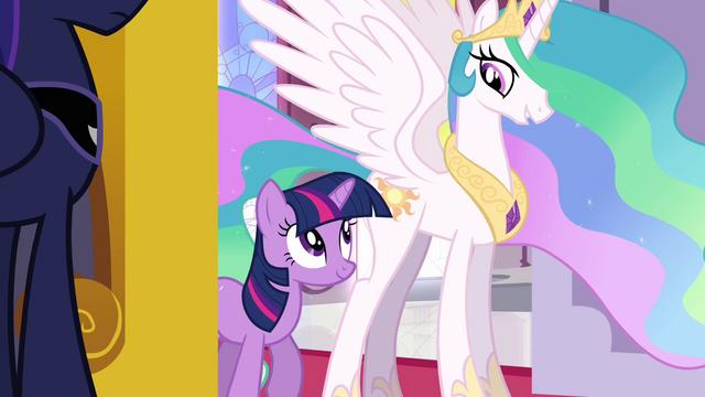 File:Princess Celestia and Twilight stops at the entrance S3E01.png