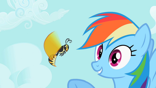 File:Rainbow Dash pointing at wasp S2E07.png
