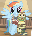Rainbow Dash bookish outfit ID S2E7