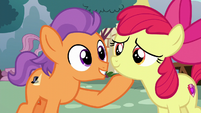 Tender Taps picks Apple Bloom's chin up S6E4
