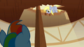 Derpy Hooves looking down 2 S2E14.png