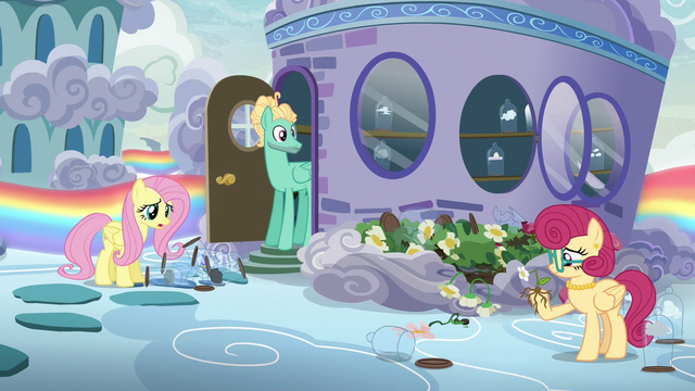 "File:Fluttershy ""I'm talking about Mom's flowers!"" S6E11.png"