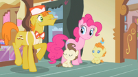 Mr. Cake now Pinkie S2E13