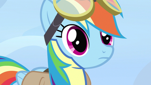 File:Rainbow Dash blank expression S3E7.png
