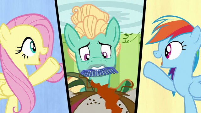 File:Fluttershy, Zephyr, and Rainbow split-screen S6E11.png